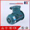 Motor de indução elétrica trifásico da C.A. da eficiência elevada