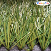 50mm Bicolor Rhombus Shape Artificial Grass for Soccer Field