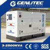 Groupe électrogène diesel silencieux superbe de 25kVA Yangdong (GYD25S)