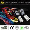 LED-Auto-Licht für Honda kleines 36SMD für Stepwgn Rk1-2series
