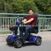 Cer-anerkannter elektrischer Roller mit vier Rädern (ST091)