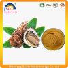 Дополнение выдержки устрицы для продукта здравоохранения