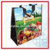 Sacs végétaux non-tissés de pp (ENV-PNV042)