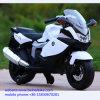 La vente chaude pp neufs Bxw en plastique badine la moto électrique