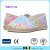 Sapatas coloridas do Slip-on do estilo do produto novo