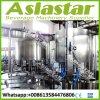 Het Water die van de goede Kwaliteit de Automatische Installatie van de Machine van de Fles van het Huisdier Zuivere bottelen