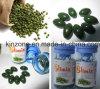 Estratto verde del chicco di caffè di Slimix che dimagrisce le pillole di dieta di perdita di peso di Softgel