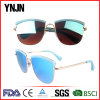 Lunettes de soleil professionnelles de vente en gros de personnalité de qualité de constructeur (YJ-F12837)