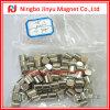 Диск N35 D10X10mm постоянный NdFeB магнитный
