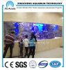 Transparent modificado para requisitos particulares PMMA ULTRAVIOLETA Sheet Aquarium de Aquarium Project