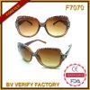 Commerce de gros de la mode des lunettes de soleil & Échantillon gratuit