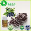 Dieta organica di perdita di peso della bacca di Acai che dimagrisce le pillole