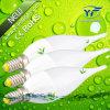 E14 B22 E17 240lm 560lm Guangzhou RoHS iluminação com marcação CE
