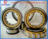 SKF Qualitätszylinderförmiges Rollenlager (NJ205EM)