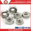 Noix Hex M3-16 de soudure de l'acier inoxydable DIN929