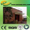 De Samengestelde Muur WPC van uitstekende kwaliteit van China