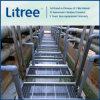 De Installatie van de Behandeling van afvalwater van Mbr UF van Litree