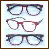 R1272 Fashion New Design Hotsale Granny Reading Glasses Meet CE