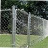 Usine de gros diamants revêtus de PVC Wire Mesh clôture métallique de sécurité