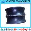 Amortecedor de borracha para as peças sobresselentes do caminhão de Shacman (Dz9114590125)