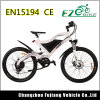 Verde energía bicicleta eléctrica con batería de largo alcance