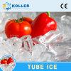 máquina de hacer hielo del tubo de la alta calidad 5000kg (TV50)
