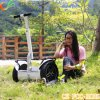 Vehículo eléctrico con Sale Price Newest Design X2