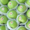 Erste Grün-Gala Apple (80/88/100/113/125) exportieren