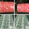 Катушки качества PPGI высокого качества вторичные внутри с много цветов