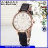 Uhr lederne der Uhr-Legierungs-Uhr-klassische Geschäfts-Damen (Wy-107A)