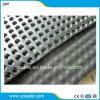 Travaux de terrassement composite en plastique HDPE Conseil/Feuille de drainage de cavité