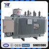13.8kv 전기 자동적인 단계 전압 조정기