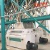 Fresadora de la limpieza de la harina de trigo del mercado de Egipto del conjunto completo