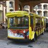Autocarro Turístico de alta qualidade (DSW-E22)