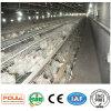 Sistema della gabbia del pollo della carne con la rete metallica e buona qualità & prezzo (un tipo)