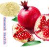 Het Poeder van het Sap van de granaatappel (het Organische poeder van het Fruit)