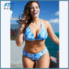 De Bikini van de manier plus het Kostuum van Swimwear van de Grootte