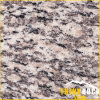 De Tegel van het Graniet van de Huid van de tijger voor de Tegel van de Muur van de Tegel van de Vloer