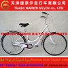 Senhora Bicicleta Elegante Projeto do Gainer 24 de Tianjin