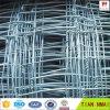 목장 (ISO9001-2008)를 위한 고품질 필드 담 메시