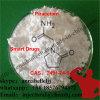 Poudre crue CAS de Piracetam de supplément de Nootropic : 7491-74-9 capacité de amélioration d'apprendre