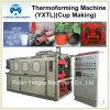 Plástico PP Copa Making forma la máquina (YXTL750 * 350)