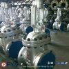 Válvula de puerta del acero de molde de ASTM_A216 Wcb