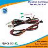 Connecteurs faits sur commande de harnais du fil M12 pour le fil électrique