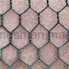Revestimento a pó de Malha de Arame Hexagonal
