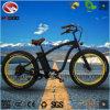 vélo électrique de plage du gros pneu 750W avec la batterie au lithium
