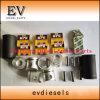 W04D W06D Wiederaufbauen-Überholungs-Installationssatz-Zylinderkopf-Dichtung-Kolbenring-Zwischenlage-Pleuelstange-Kurbelwelle-Peilung-Set