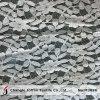 Tissu d'Ivoire tricot dentelle de gros (M3026)
