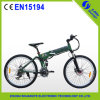 Bequemes Eletric Moutain Bike mit CER Certificate