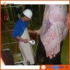 Linha Turnkey da chacina do gado de Halal do projeto